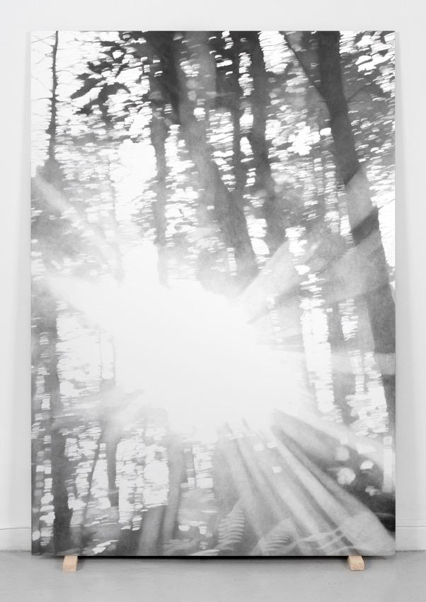 Soloppgang ved Fontainebleau, 2016. Blyant på papir montert på aluminium, 140 cm x 100 cm. Foto: Istvan Virag