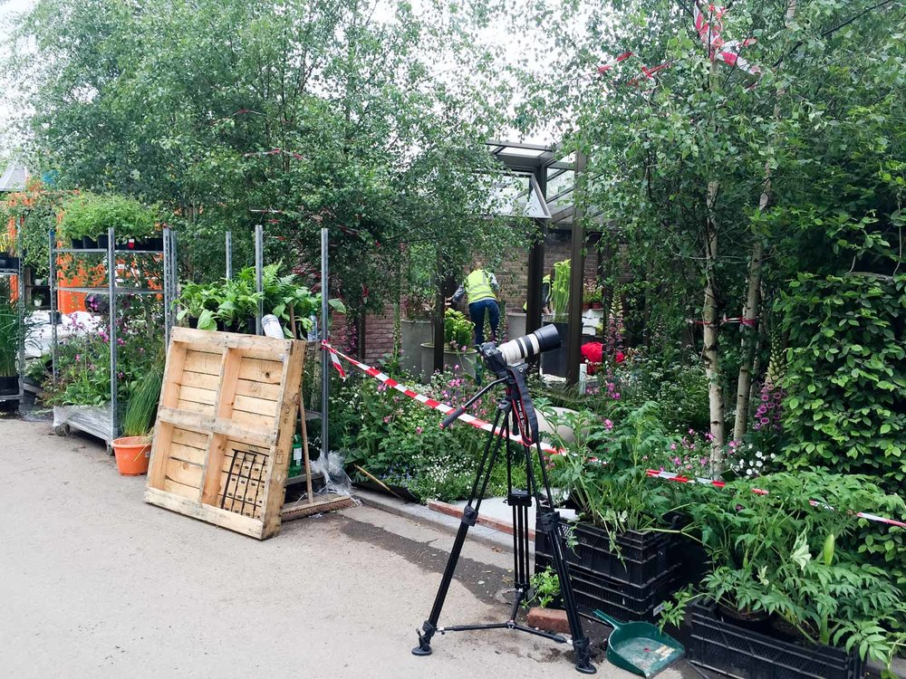 The day of filming the garden is still a work in progress.