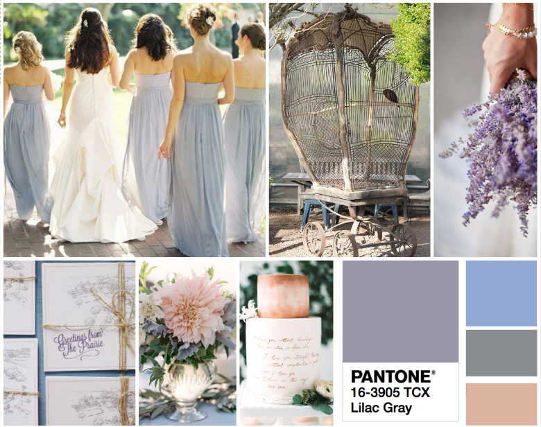 Savvy Event Studio Color Pantone Inspiration
