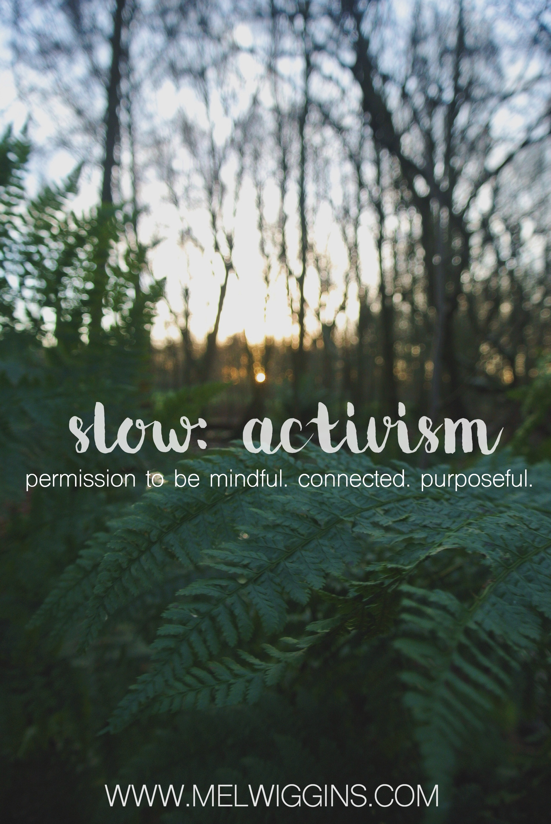 Slow Activism: The key long lasting social change