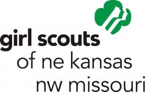2010-GS-logo-with-council-name-300x190.jpg