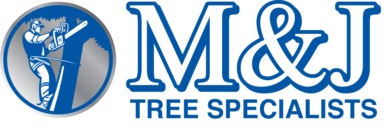 M & J Tree Specialists Ltd