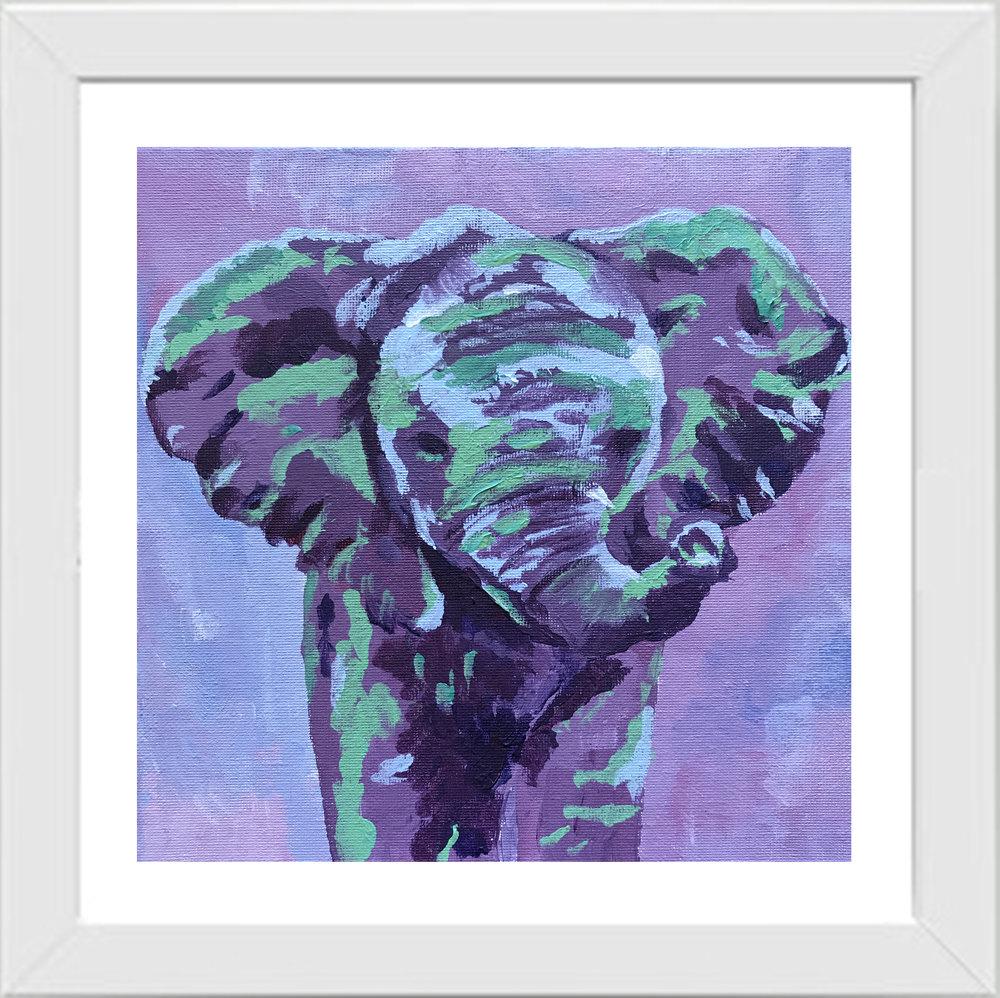 Fizz-Fade-Elephant1