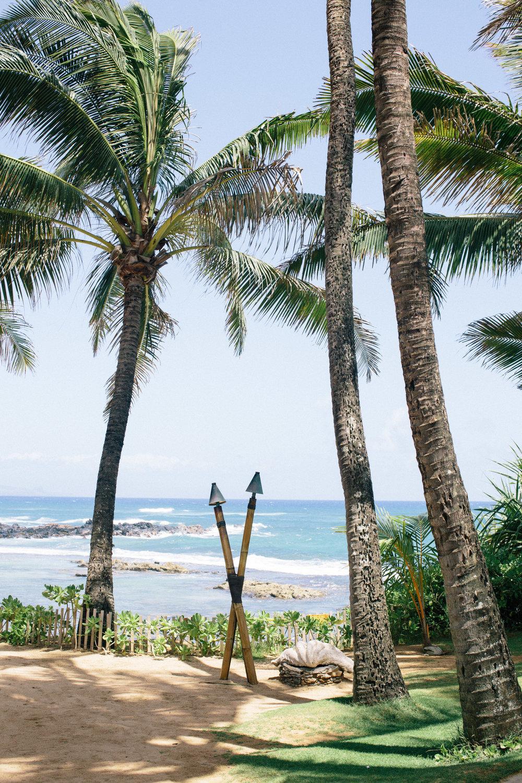 fizz-fade-hawaii-paia-3.jpg