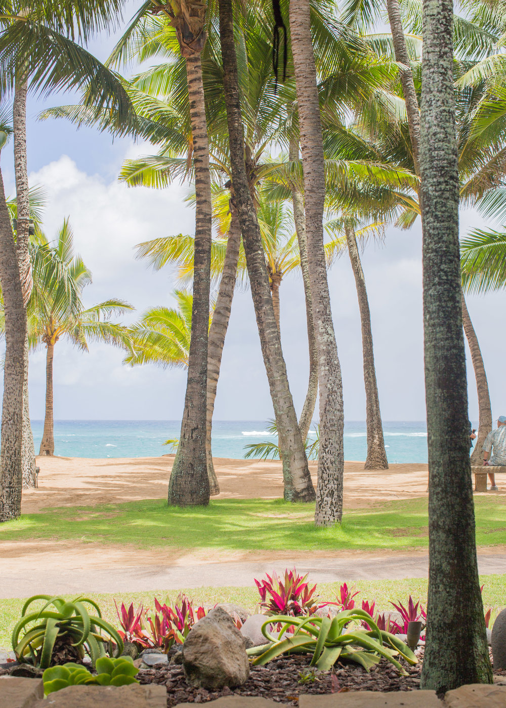 fizz-fade-hawaii-paia-4.jpg