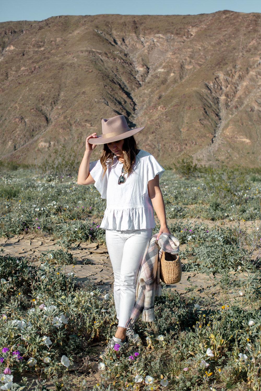 fizz-fade-super-bloom-desert-13.jpg