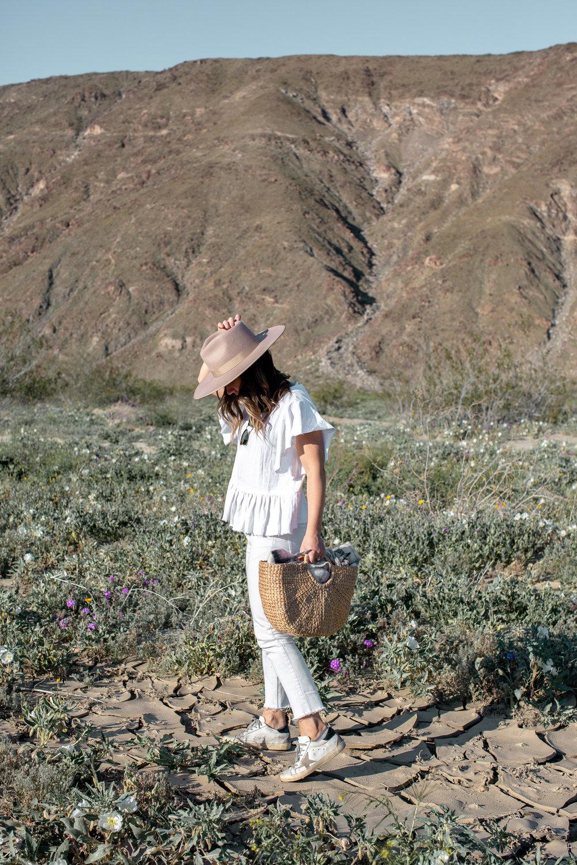 fizz-fade-super-bloom-desert-14.jpg