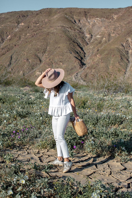 fizz-fade-super-bloom-desert-15.jpg