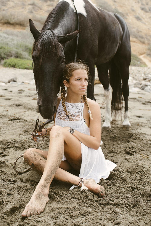 equine photographer Marcus roy Hoffman