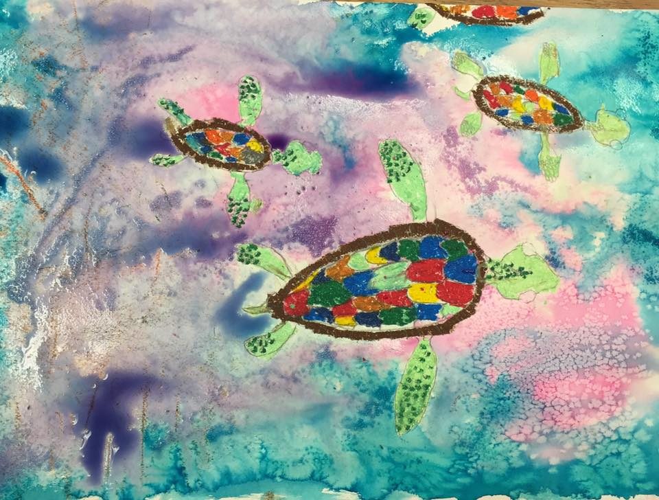 Sea Turtles - top view           (4th grade)