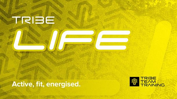 LIFE-title-logo.jpg