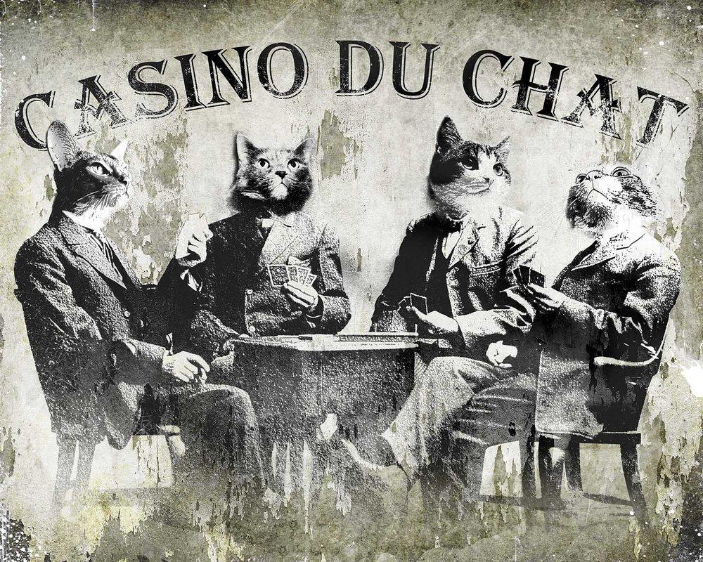 Casino Du Chat