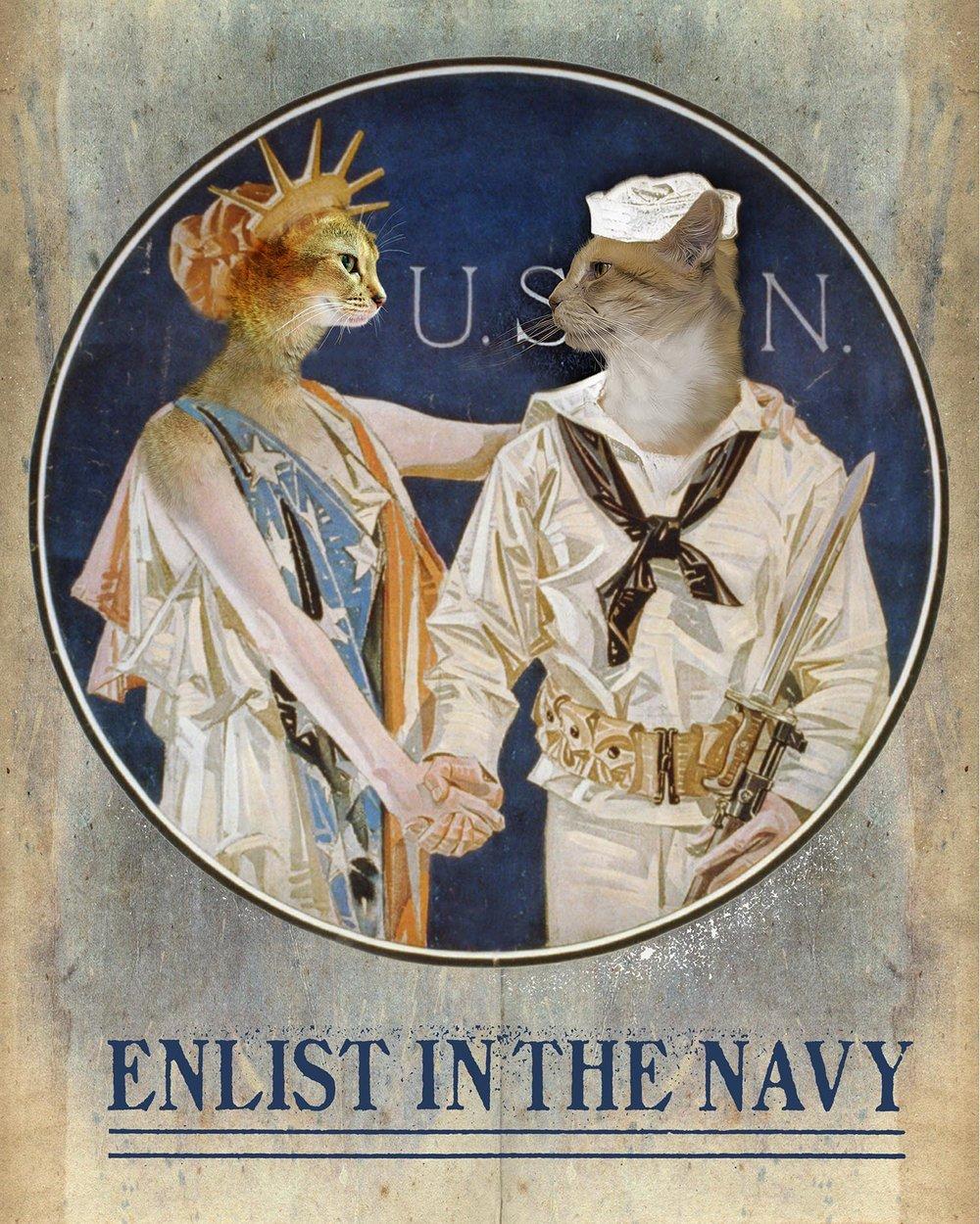 Enlist in the Navy