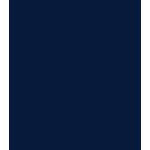 noun_scouts-honor_143503.png
