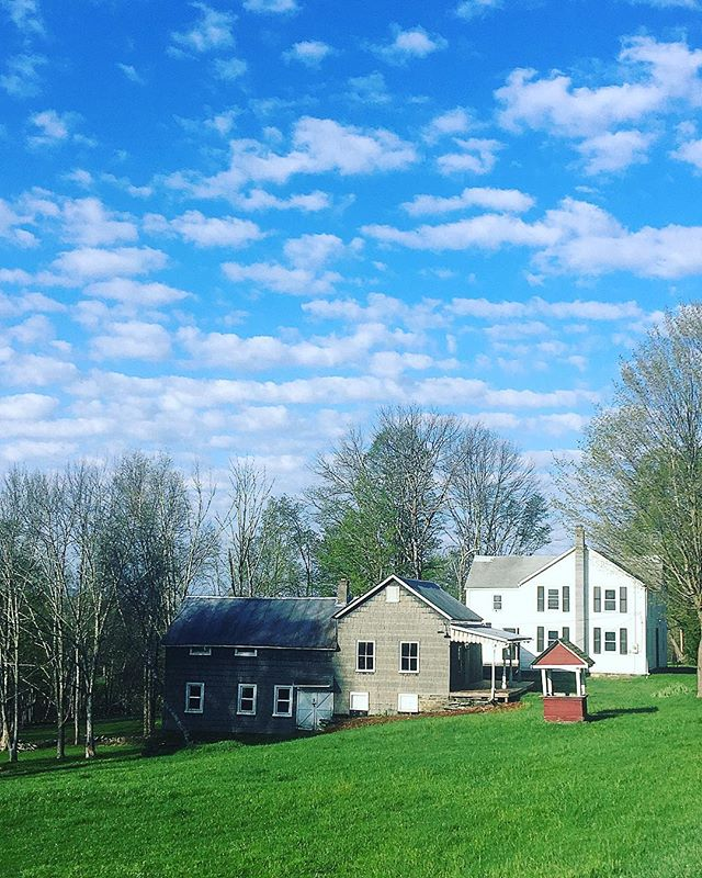 Blue skies for days 💙 #bluesky #kiki❤️#accordny #upstateny #views #greens
