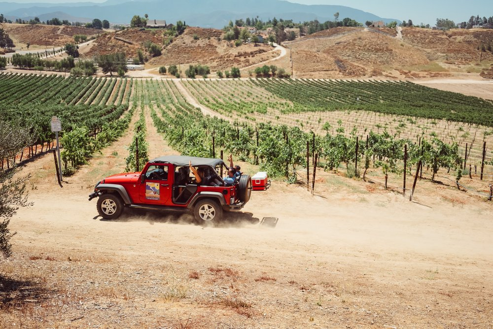 people-on-a-jeep-tour-through-a-vineyard
