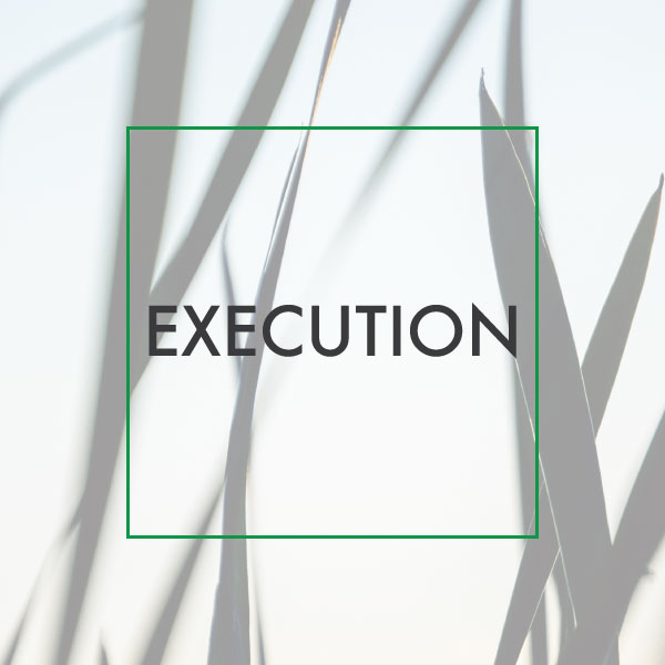 Digital Media Services and Execution