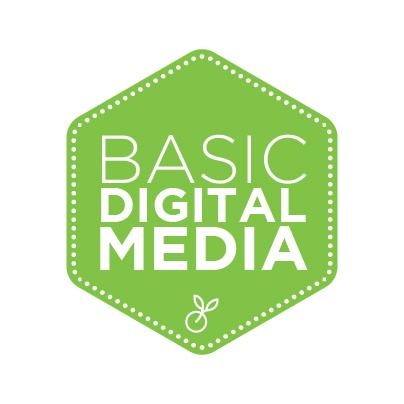Basic digital marketing package