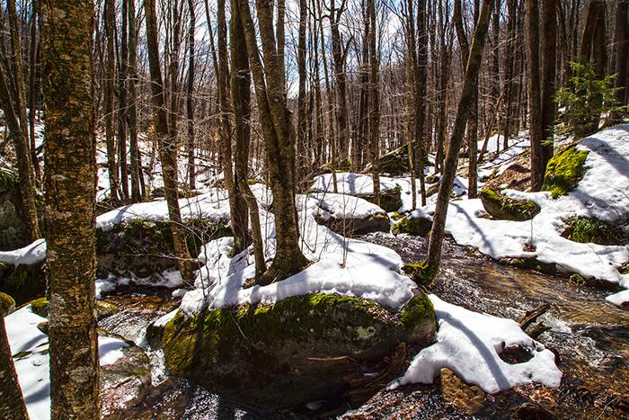 morrison-trail.jpg