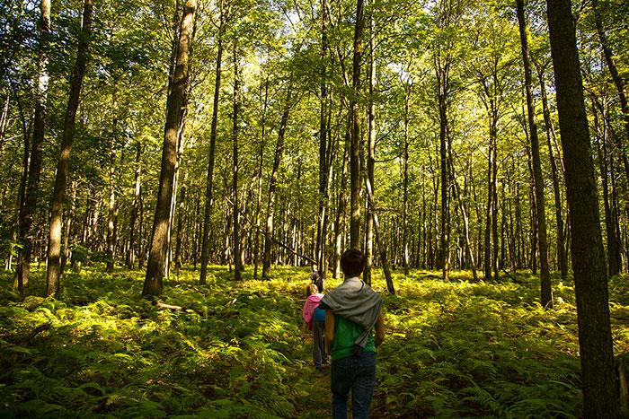 tanbark-trail-hike.jpg
