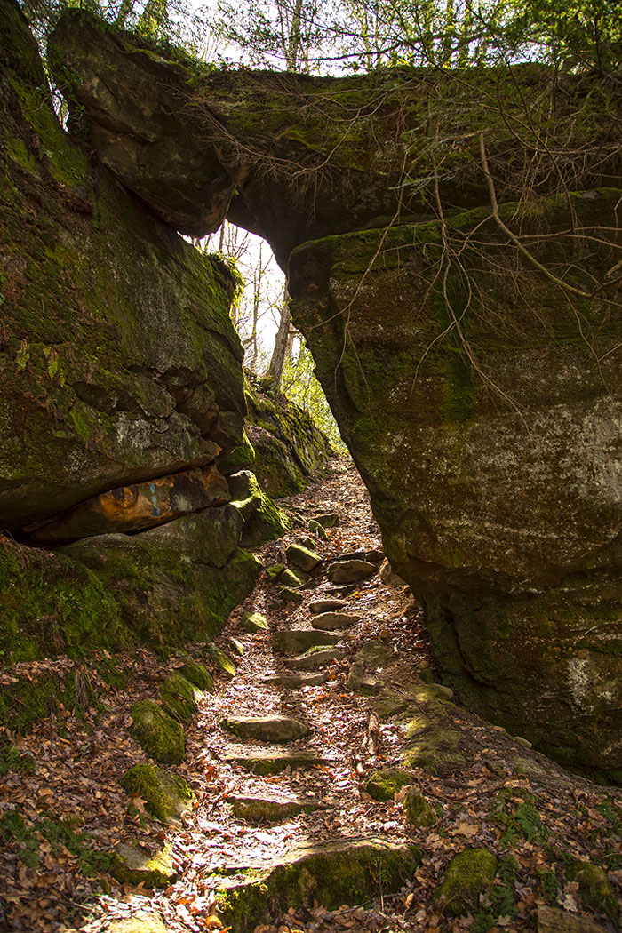 tanbark-trail-needle-rock.jpg