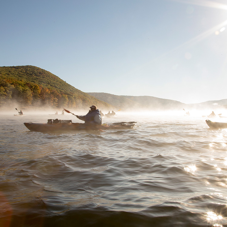 Guided kayak trips on the Allegheny River
