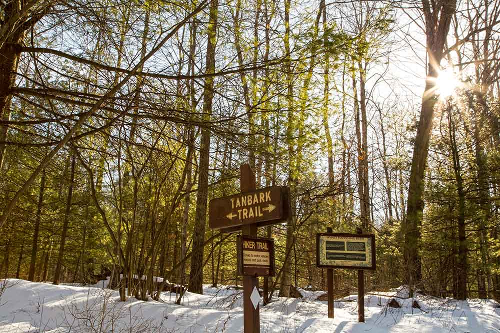 Snowshoe hike - Tanbark Trail - Allegheny National Forest