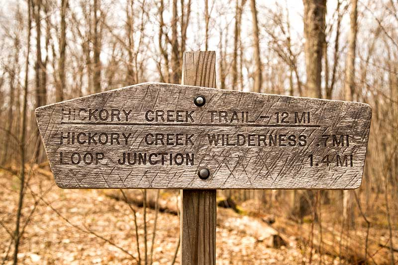 Hickory Creek Wilderness trail in the Allegheny National Forest