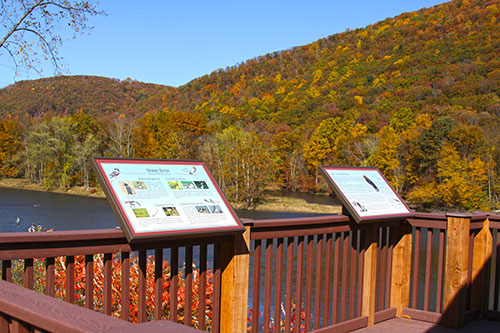 Kinzua Dam Eagle Viewing Platform