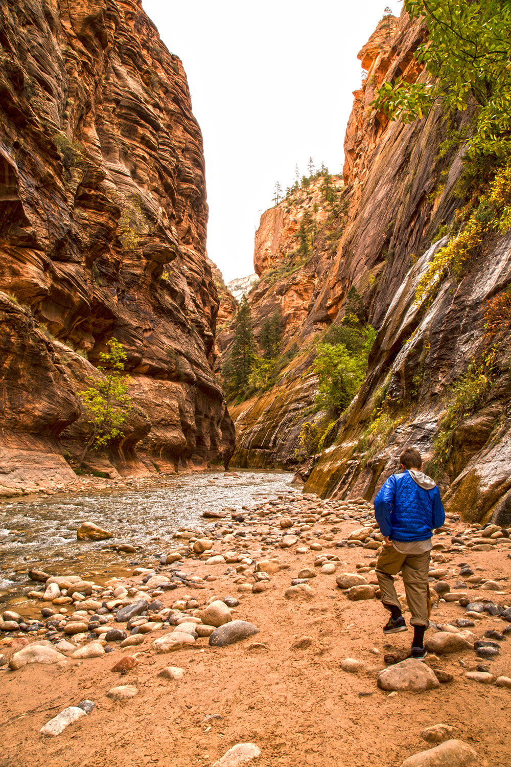zion-narrows.jpg