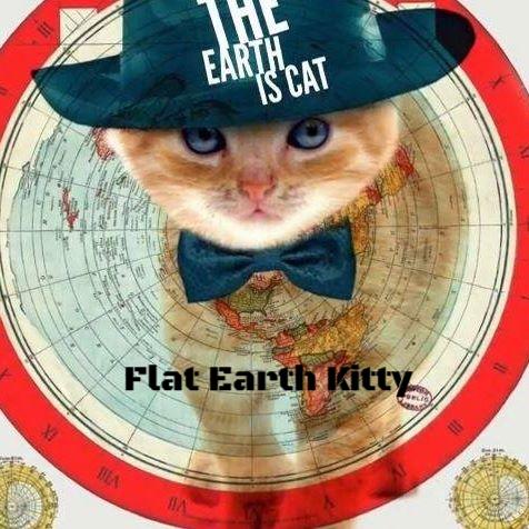 Flat Earth Kitty