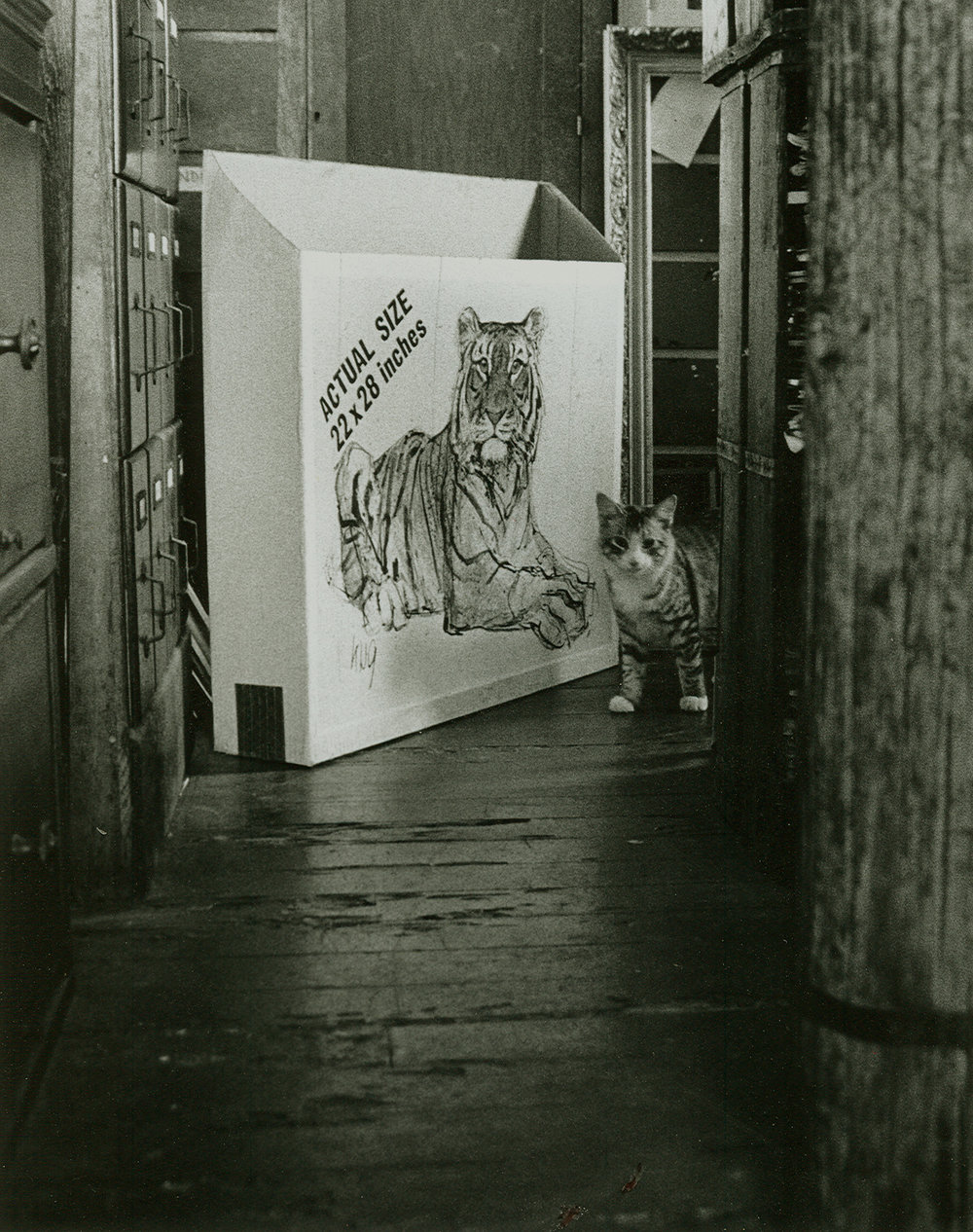 Loren Ellis Little Cat from Cat series 1973.jpg
