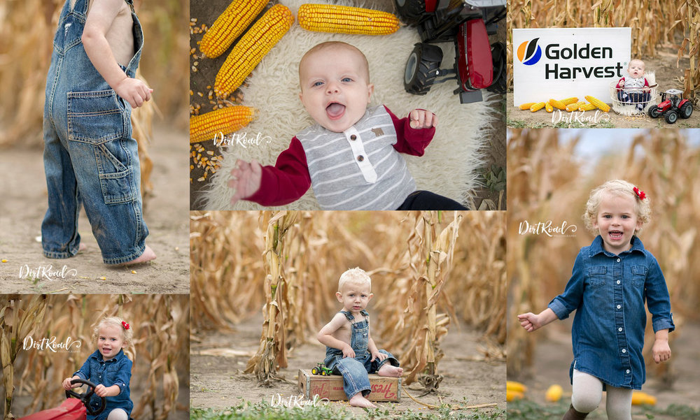 kids-corn-field-mini-sessions-nebraska-child-photographer-kelsey-homolka-nerud