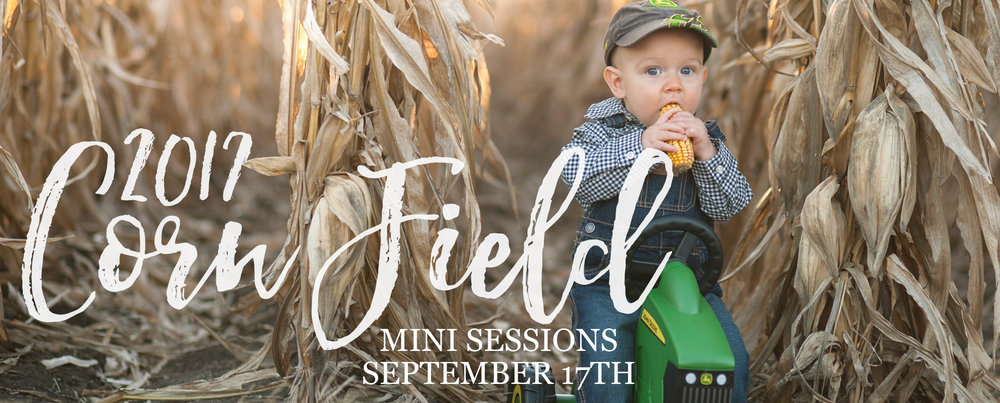 kids-corn-field-mini-sessions-nebraska-photographer-kelsey-homolka-nerud