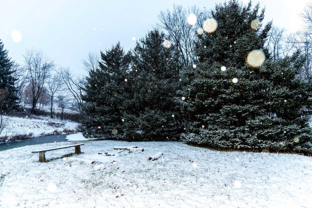 Winter-071-1-min.jpg