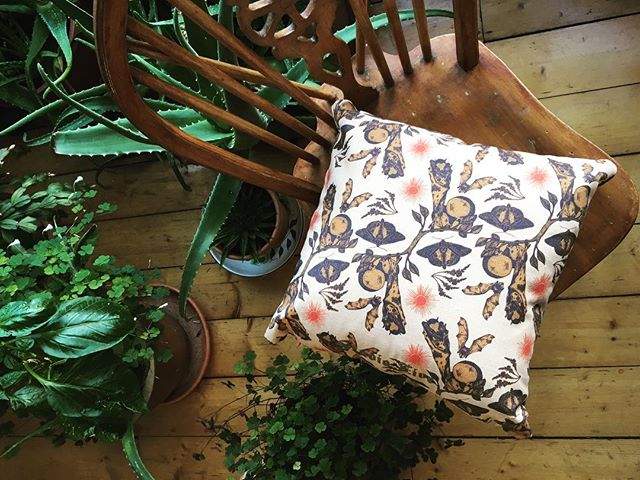 Comfy cushions and hanging bats, now only £25🦇🍊🌿 • • • • • • #studiofive #cushion #organic #organiccushion #sustainablefashion #sustainability #sustainableliving #homewear #home #lifestyle #livingprint #illustration #illustrationart #animalillustration #anaimlprint #localartist #edinburgh #styleinspo #style #design #artdesign #fashiondesign #instaartist #instaart #picoftheday #artistofinsta #designer #homeinspiration #interiordesign #interior