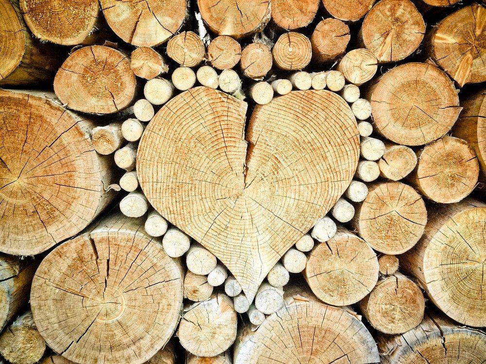 heart-1288420_1280.jpg