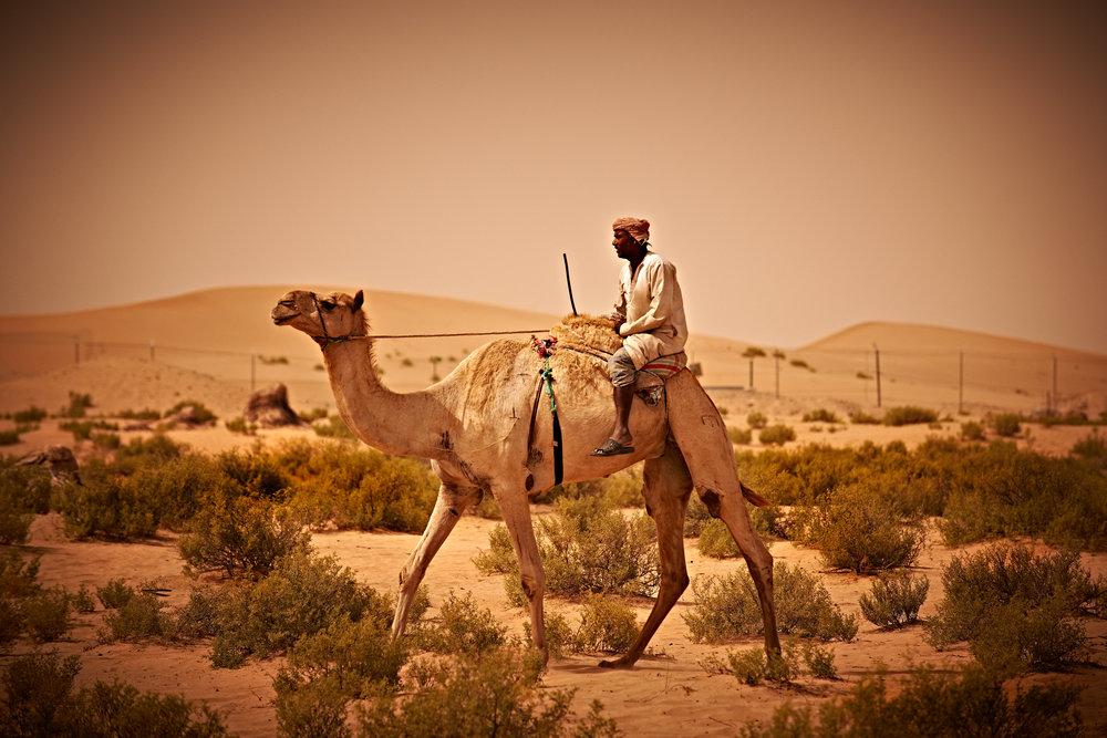 Rosewood Abu Dhabi 1241.jpg
