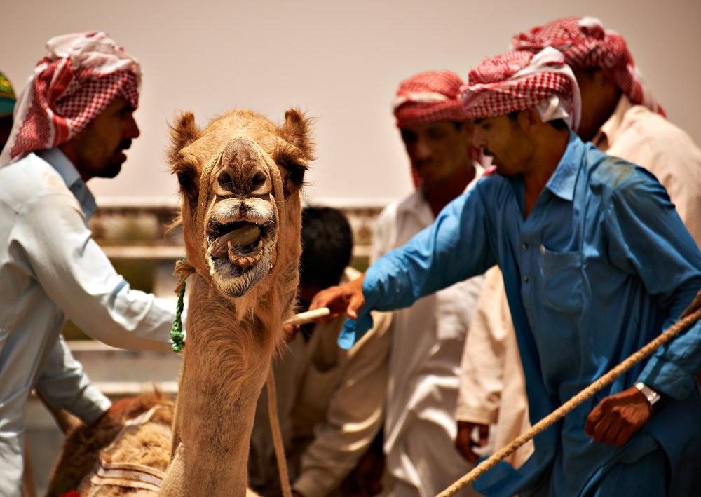 Rosewood Abu Dhabi 1289.jpg