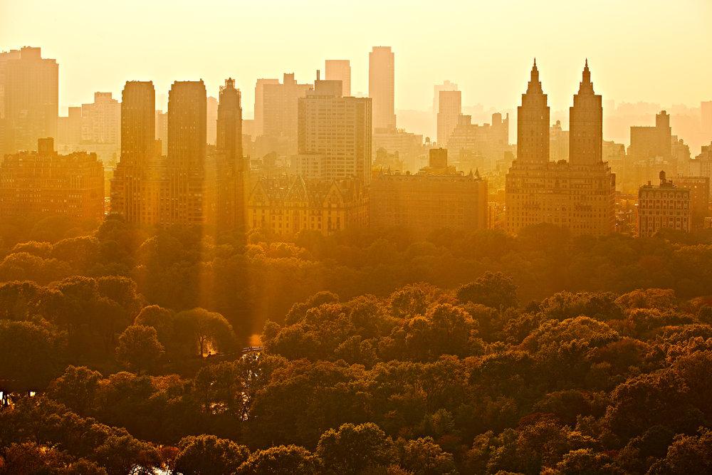 Rosewood NYC 2034.jpg