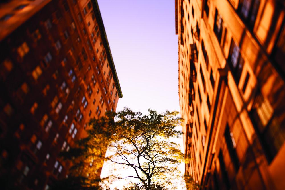 Rosewood NYC 0004.jpg