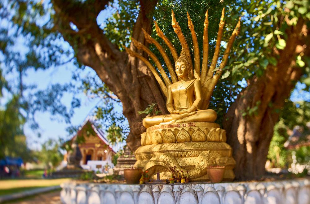 Rosewood Luang Prabang 2016 0210rgb.jpg
