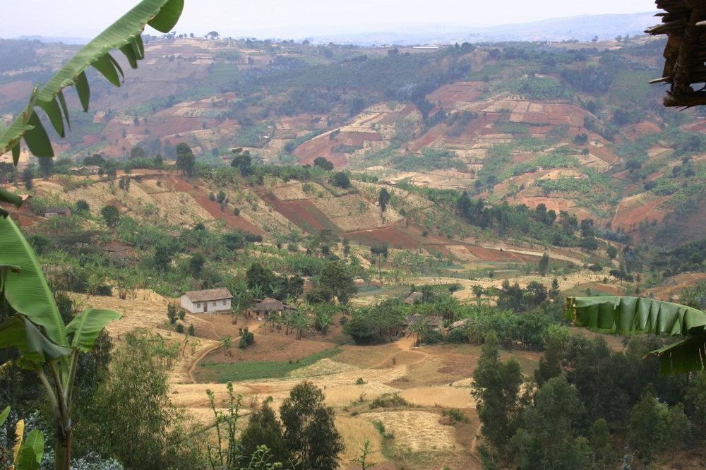 burundi_land.jpg