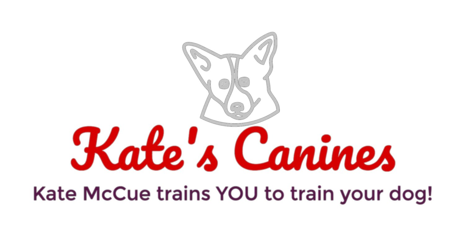 Kate's Canines, LLC: Dog Training and Behavior Modification