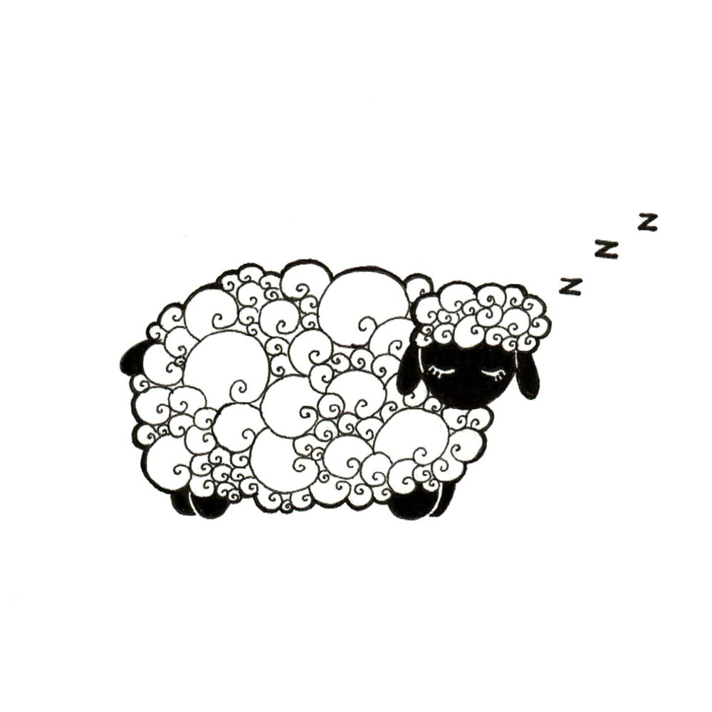 Day 12: Sheep