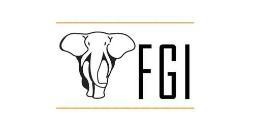 fgi+finance.jpg