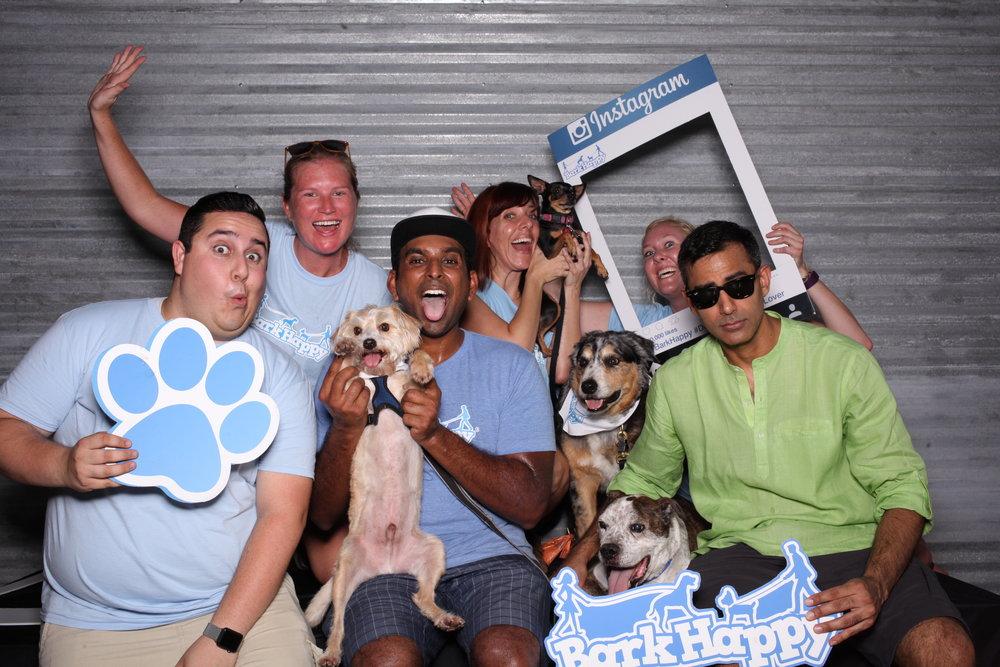 2nd Annual Bark Ice Cream Social