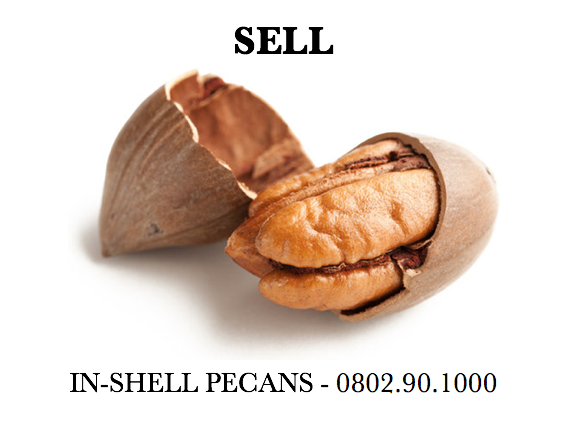 SELL IN-SHELL PECANS