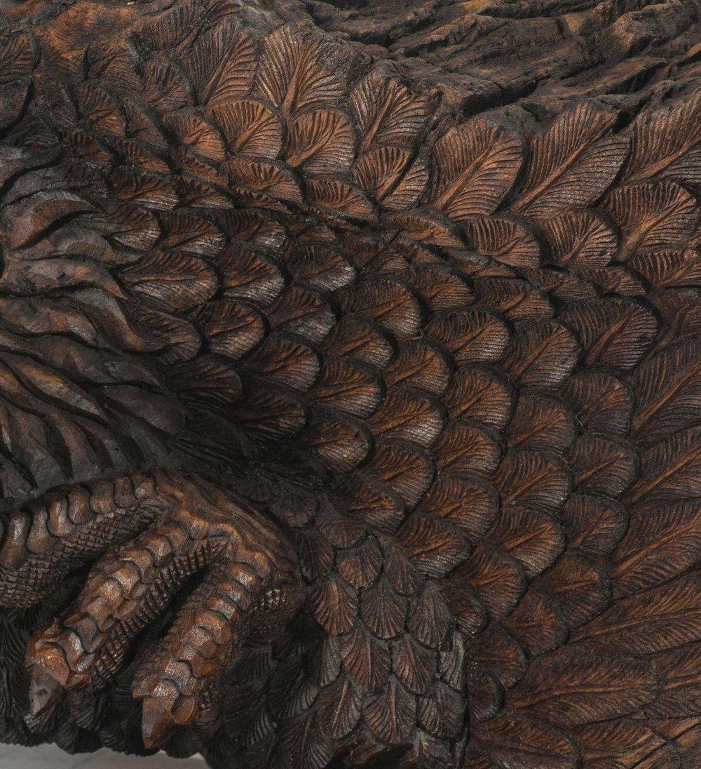 Eagle-12_31.jpg