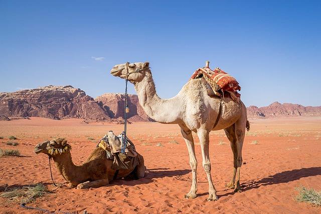 wadi-rum-1120371_640.jpg